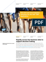 Fast and Low Cost Analytics Solutions for the Sap Erp Application
