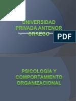 Grupo 1 - Psicologia Oraganizacional