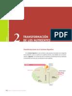 TRANSFORMACIÓN DE NUTRIENTES