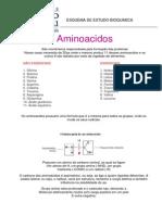 Esquema de Estudo Bioquimica