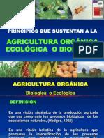 2. PRINCIPIOS AGRICULTURA ORGANICA