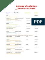 Listado de Plantas Para Los Orichas