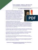 Proyecto Promocion Desarrollo Economico Local Marco Conceptual