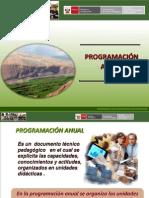 Programacion Anual 2012