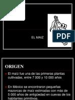 origendelmaiz-101119053340-phpapp02