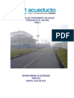 Informe Final Junio 2013