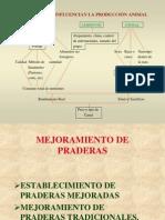 4.- Instalación y manejo de pastos