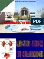 Sistema Genitourinario Susana