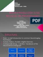 Breve introducción a las técnicas de Neuroimagen