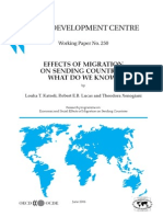 Effects of Migration on Sneding Countries_What Do We Know