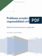 Problemas Actuales de La Reponsabilida