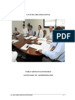 Libro de Cultura Organizacional