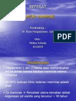 126572467 Pow Point Tumor Mammae Ppt