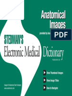 Stedman's Electronic Medical Dictionary 6th Edition