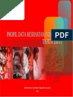 Profil Kes Indonesia 2011