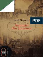 Iacob Negruzzi - Amintiri Din Junimea (Demo)