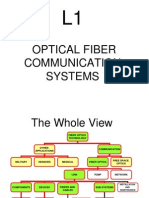 Fiber presentation.ppt