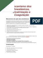 Mecanismo dos Anestésicos, Cicatrização e Coagulação