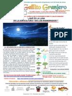 Boletín Técnico Coleccionable Octubre 2013