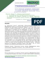Epidemiologia de La Tuberculosis Bovina