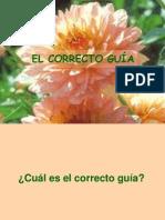 EL CORRECTO GUÍA