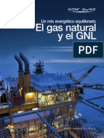 Gas Natural y El GNL
