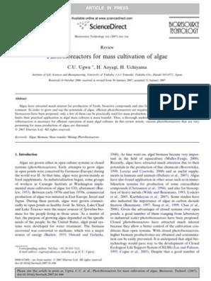 Photobioreactors For Mass Cultivation Of Algae 9 Algae Nature