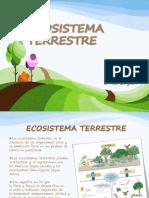 2ECOSISTEMA TERRESTRE (1)