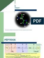peptidos-1226136032056562-8