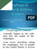 Esophageal Cancer & Kidney Cancer