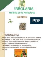 Herbolaria Cecy 2003 Terminado
