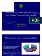 3DP Present Rice Production MAS