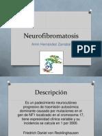 Neurofibromatosis 2010