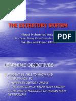 Excrretory System