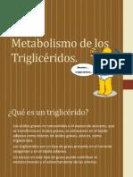Metabolismo de los Triglicéridos