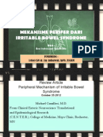 Irritable Bowel Syndrome Jurnal Review