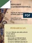 PENYAKIT GASTROINTESTINAL1lansia1