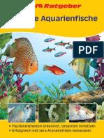 11103 RG Gesunde Aquarienfische D
