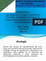 Clase 7ma Micología