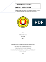 laporan lapangan