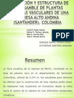 COMPOSICIÓN Y ESTRUCTURA DE UN ENSAMBLE DE PLANTAS