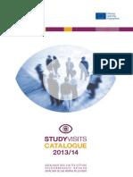 Vizite de Studiu 2013-2014