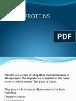 Proteins Prez
