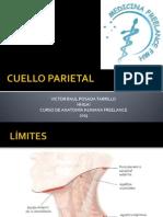 Cuello Parietal - Mfl2013