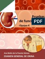 4 Pruebas de Funcion Renal Eq 4 (1)