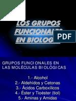 2-3a_gruposfuncionales