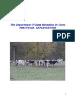 Metode Si Importanta Depistarii Caldurilor La Bovine