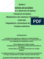 Clase metab. de lípidos I-2010