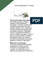 Zoologia Dos Invertebrados II - Insetos
