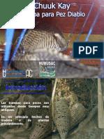 Trampa Chuuk Kay PDF Little